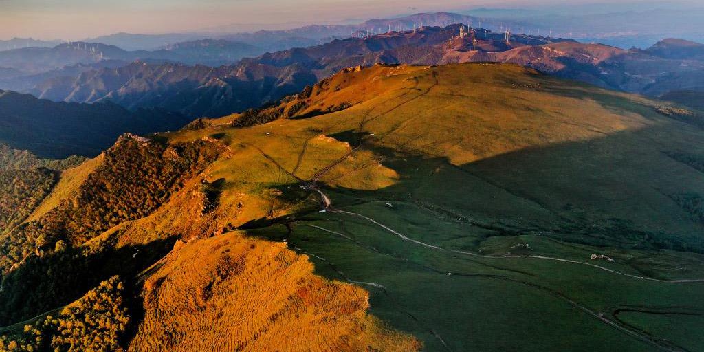 Fotos: pradaria alpina na Província de Shannxi