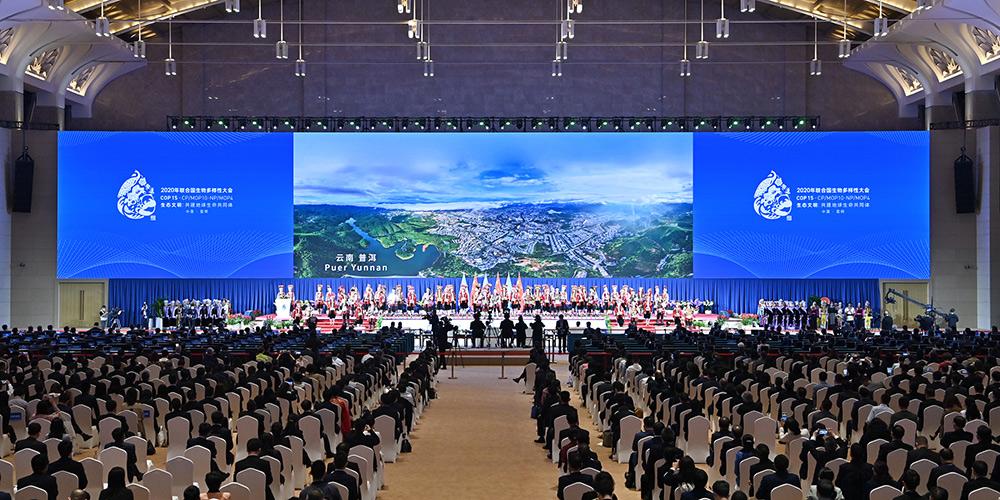 COP15 começa em Kunming da China com civilização ecológica em destaque