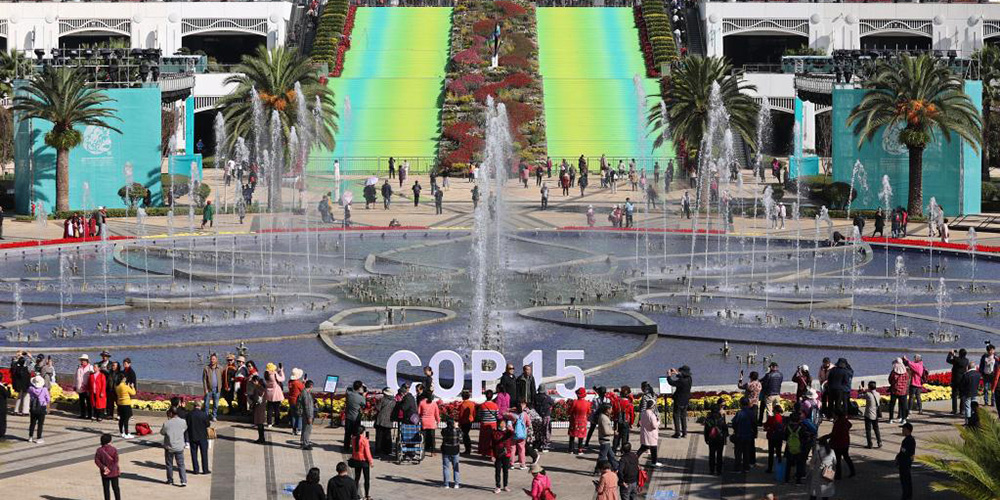Locais da COP15 abertos ao público gratuitamente